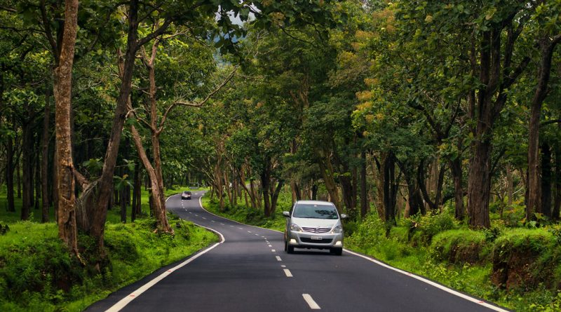 Self Drive Road Trip from Bangalore to Bandipur Forest