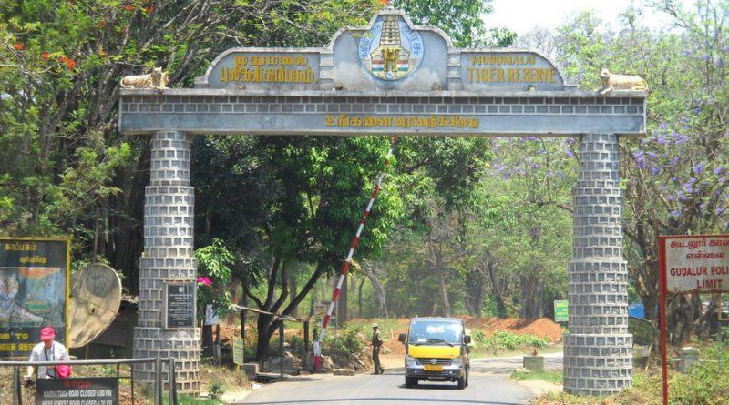 Madumalai National Park
