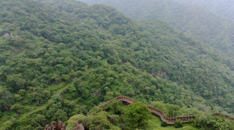Kumbhalgarh Wildlife Safari