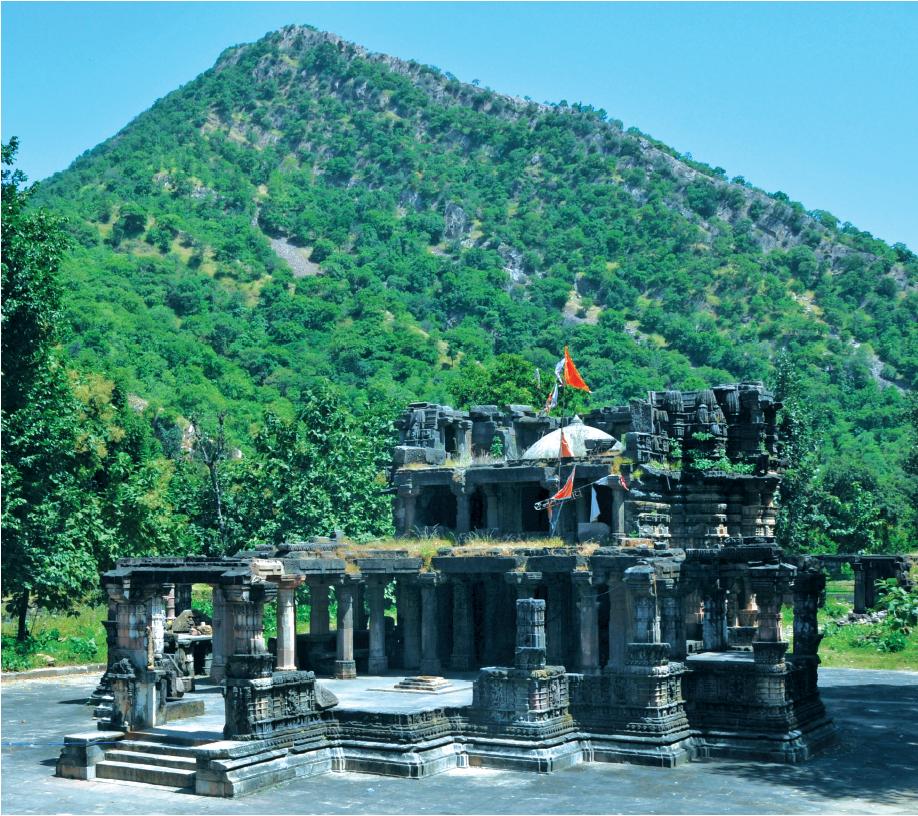 Polo and Vijaynagar Forests