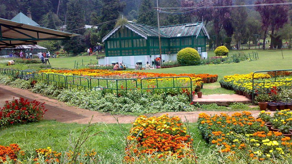 botanical garden in ooty