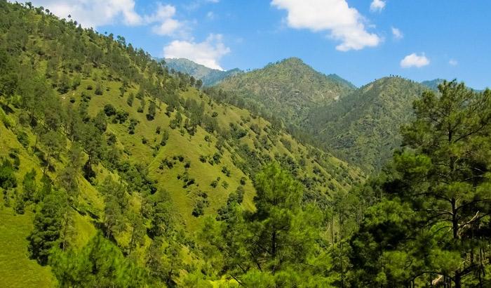 Green Valley, Shimla