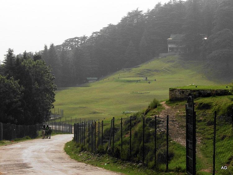 naldehra peak, Shimla